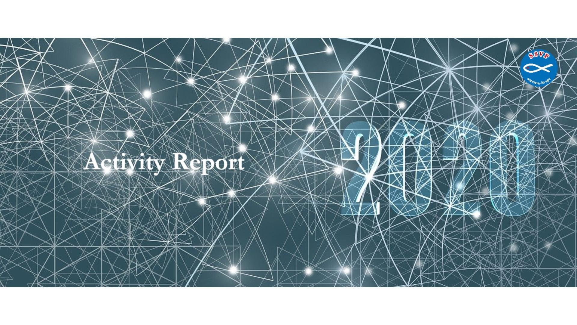 Report internazionale 2020